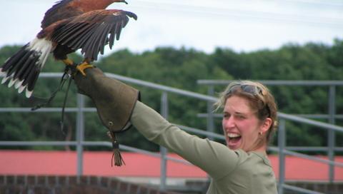 Roofvogel Workshop